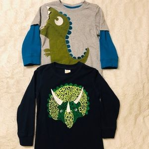 Toddler Boy Gymboree Long Sleeve Dinosaur Tees